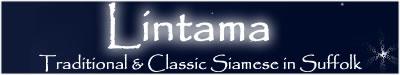 Lintama Link Banner